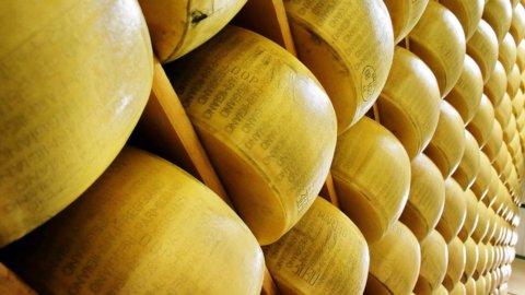 Parmigiano Reggiano: Lactalis compra Nuova Castelli