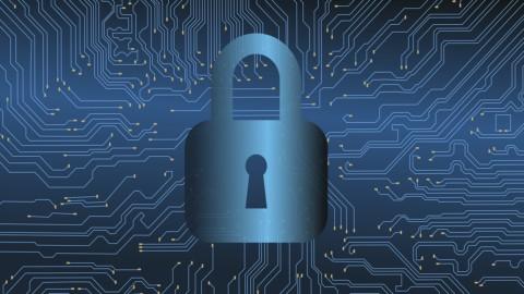 Il cybercrime fa 500 miliardi di dollari di danni nel mondo