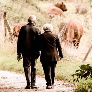 Pensioni, stangata di M5S e Lega su professionisti e dirigenti