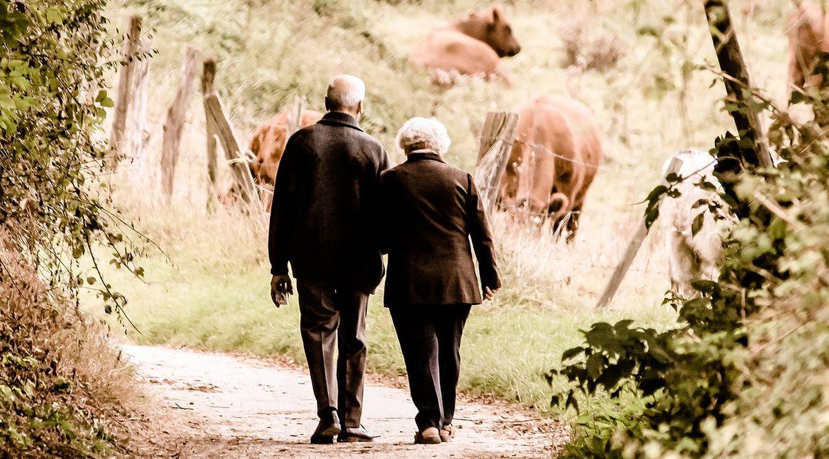 pensionati ritirati in campagna