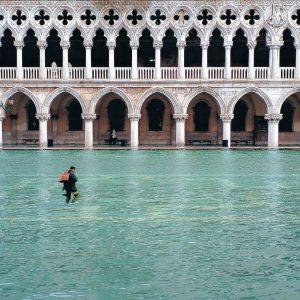 Salvare San Marco a Venezia, i bestseller del passato, mostre e cinema su FIRST Arte