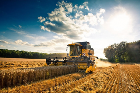 Emergenza agricoltura: impiegare disoccupati, stagionali o stranieri?