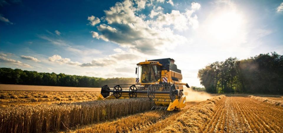 L'Europa taglia fondi all'agricoltura: Regioni e Comuni in rivolta