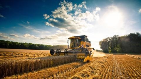 Agricoltura, contributi alle imprese per alleggerire i debiti