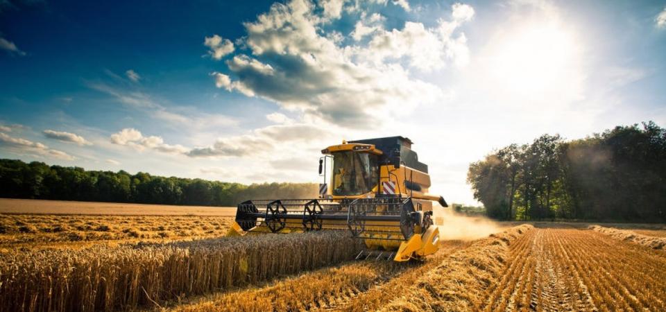 Agricoltura: l'Italia chiede una nuova politica Ue