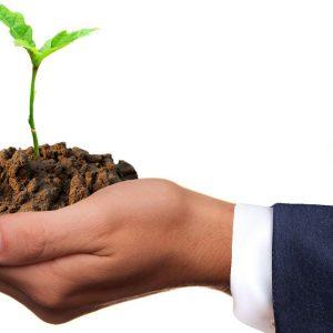 Agricoltura 4.0: formazione gratuita per i giovani agricoltori