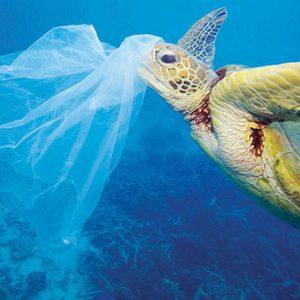 Mediterraneo: un tuffo nei rifiuti di plastica