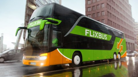 """Bus fermi, Flixbus lancia allarme: """"A rischio aziende e lavoratori"""""""