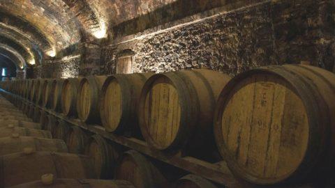 Il vino italiano vola nel mondo: export + 5,9%