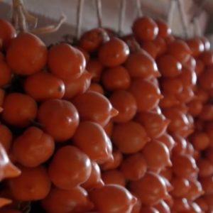 Il pomodoro del Piennolo, l'oro del Vesuvio