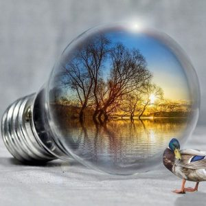 Enel X: accordo con Grouparma su energia e consumi