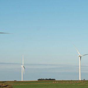 Elettricità, il maltempo spinge l'eolico: in aprile +20%