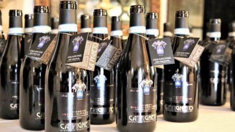 Amarone Ca' Pigneto, un vino come atto d'amore del grande chirurgo per la Valpolicella
