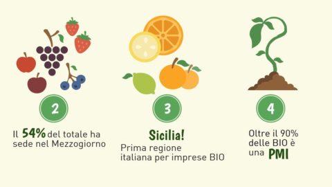 """Il """"Bio"""" cresce sulle tavole degli italiani: in 9 mesi +4.500 imprese agricole con certificazione biologica"""