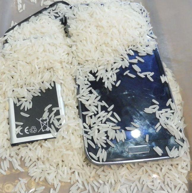 Smartphone nel riso