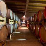 La Slovenia vuole farsi il suo aceto balsamico, un danno da 1 miliardo di euro per l'Italia