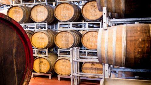 Arrivano fondi per vino, birra e buona tavola dalla legge di Bilancio