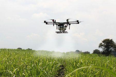 Agricoltura e rinnovabili: alle pmi 250 milioni da Bei e Unicredit
