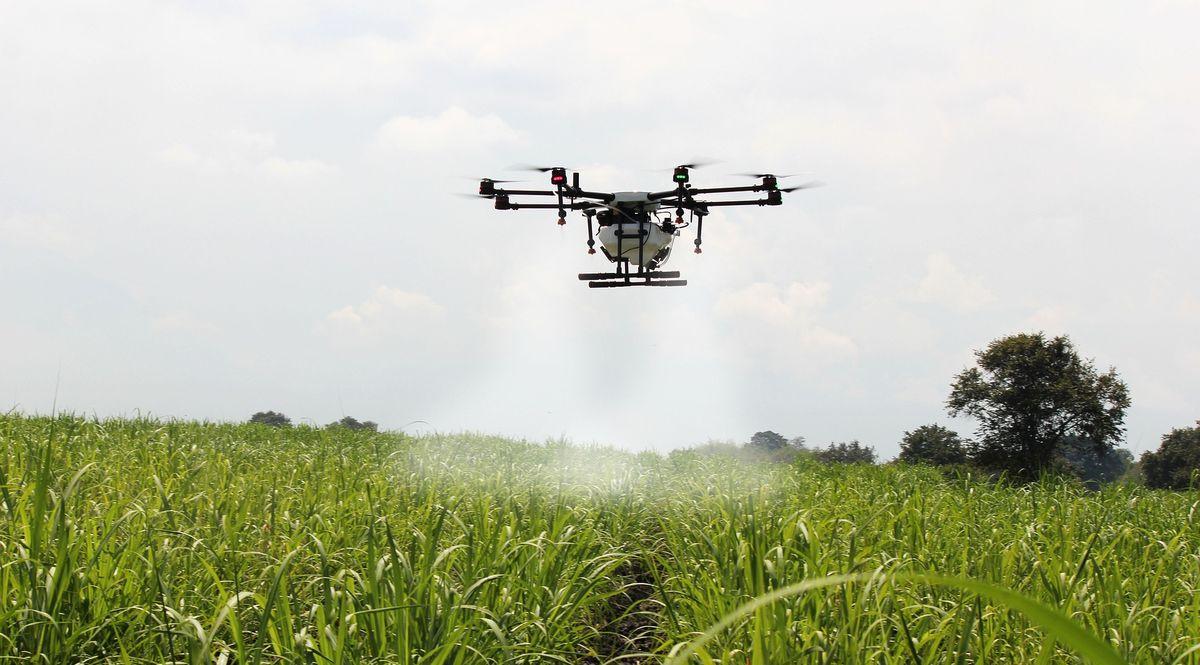 Un drone fertilizza un campo agricolo, agricoltura 4.0