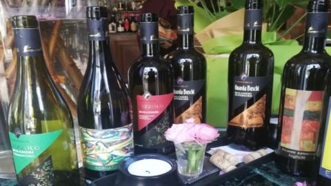 Vino: Zizzolo Fornacelle di Bolgheri, il mezzadro del conte vide lungo