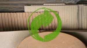 legno e carta per la bioeconomia