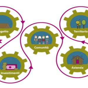 Crowdfunding sostenibile: arriva la prima piattaforma italiana