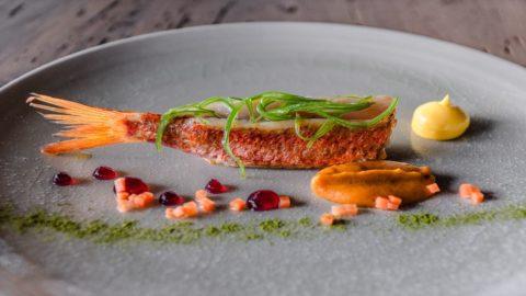 La ricetta di Antonello Sardi: Triglia di scoglio, crema di carote, gel di marinata