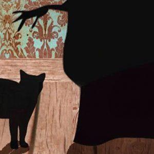 """Racconto della domenica: """"La gattara"""" di Alessia Coppola"""