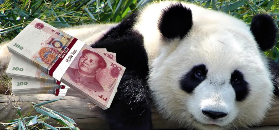 Panda bond in arrivo: ecco cosa sono e come funzionano