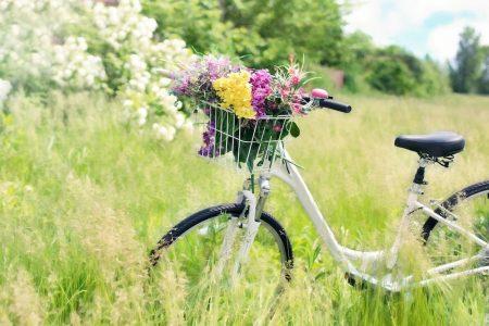 Bici e turismo: l'Italia è bike friendly e il Trentino batte tutti