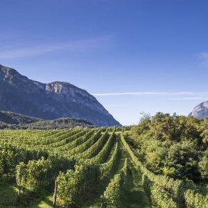 First&Food tra ricette e la storia del Ferrari di Trento