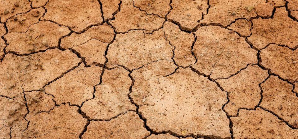 Clima e agricoltura: in arrivo misure sulla siccità