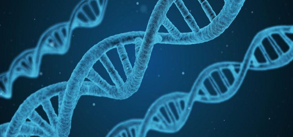 Malattie genetiche: chi ha diritto di sapere?