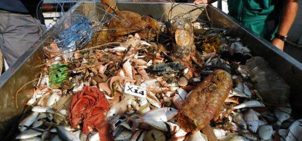 Rifiuti, sul fondo del mare più plastica che pesci
