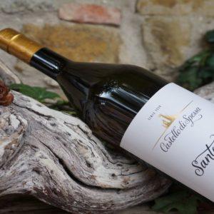 Pinot Bianco Santarosa, il pluripremiato dal nuovo stile