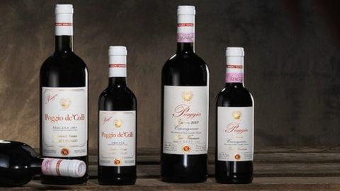 Gambero Rosso: i migliori vini d'Italia 2020