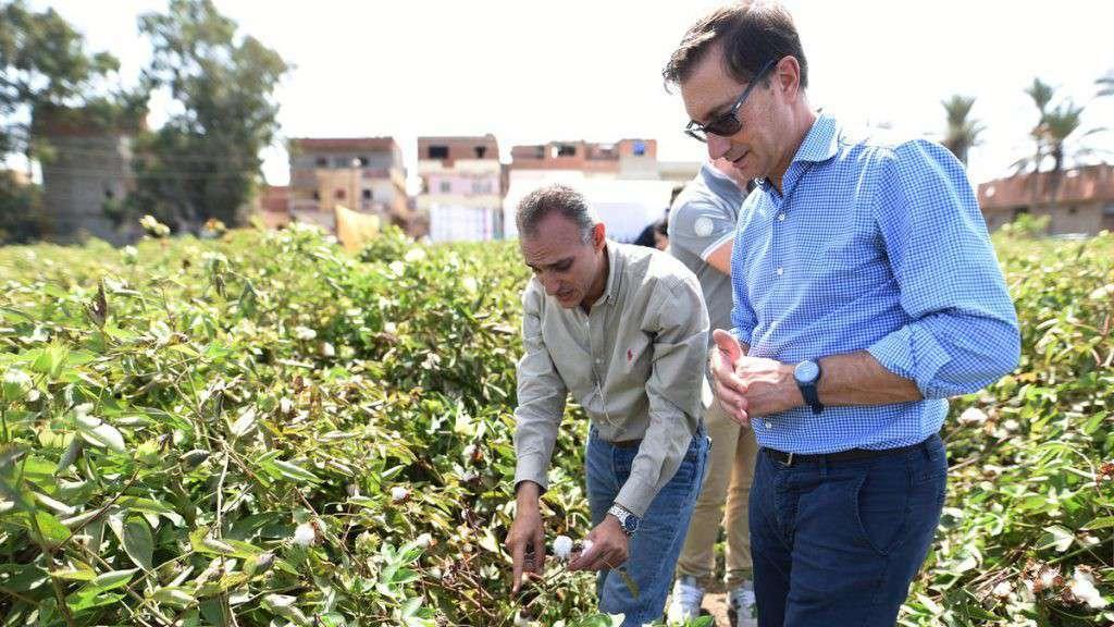 Stefano Albini visita piantagione di cotone