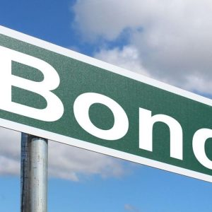 Green bond: nel 2020 scendono in campo i Governi