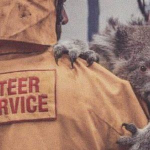 Incendi Australia: morto 1 miliardo di animali, 183 gli arresti