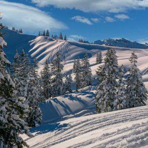 Meteo: torna la neve, ma mercoledì sarà primavera