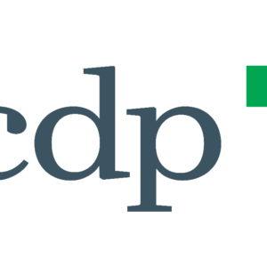 Cdp nel Fondo Onu per gli investimenti sostenibili