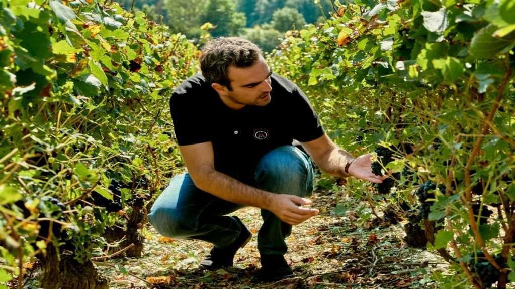 Stephane Revol nei terreni dello Champagne Comte de Montaigne
