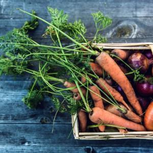 Agricoltura, dal campo alla tavola: le 5 proposte alla Ue