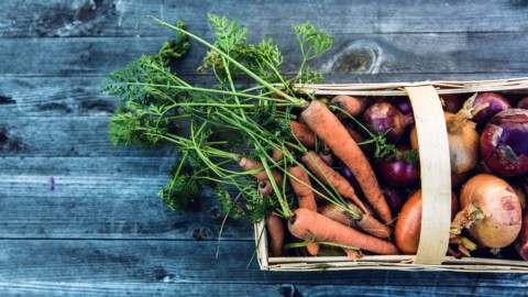 Export: l'agroalimentare resiste al Covid (+9,3%)