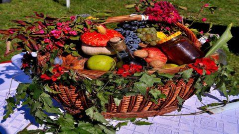 Agricoltura: slitta al 2023 la nuova politica agricola europea