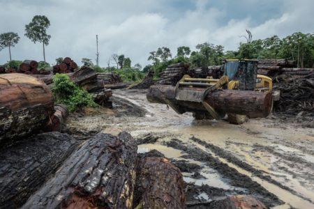 Brasile: Bolsonaro e Covid-19, due mine per l'Amazzonia