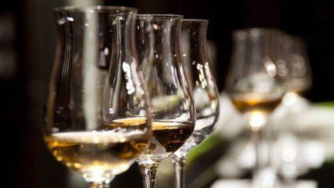 Studio Unicredit sul settore vitivinicolo: Sicilia al top qualità