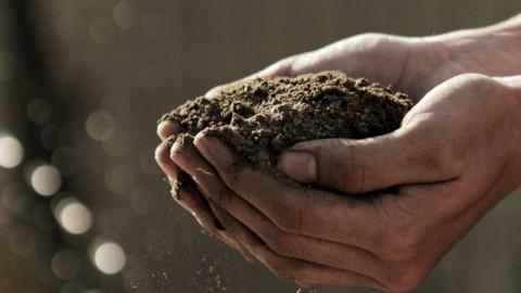 Agricoltura e Sicurezza: Italia verso la ratifica della Convenzione di Ginevra
