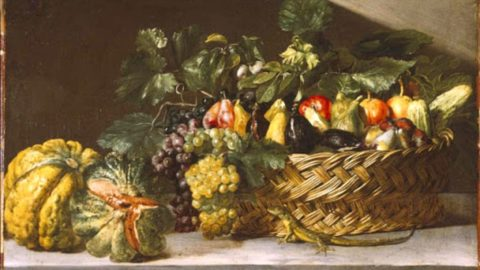 Torna in vita il melone Rospa, raffigurato nei dipinti del '600