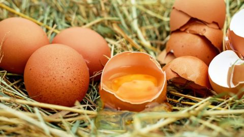 Curarsi a tavola: dove trovare le vitamine A e D per aumentare le difese immunitarie